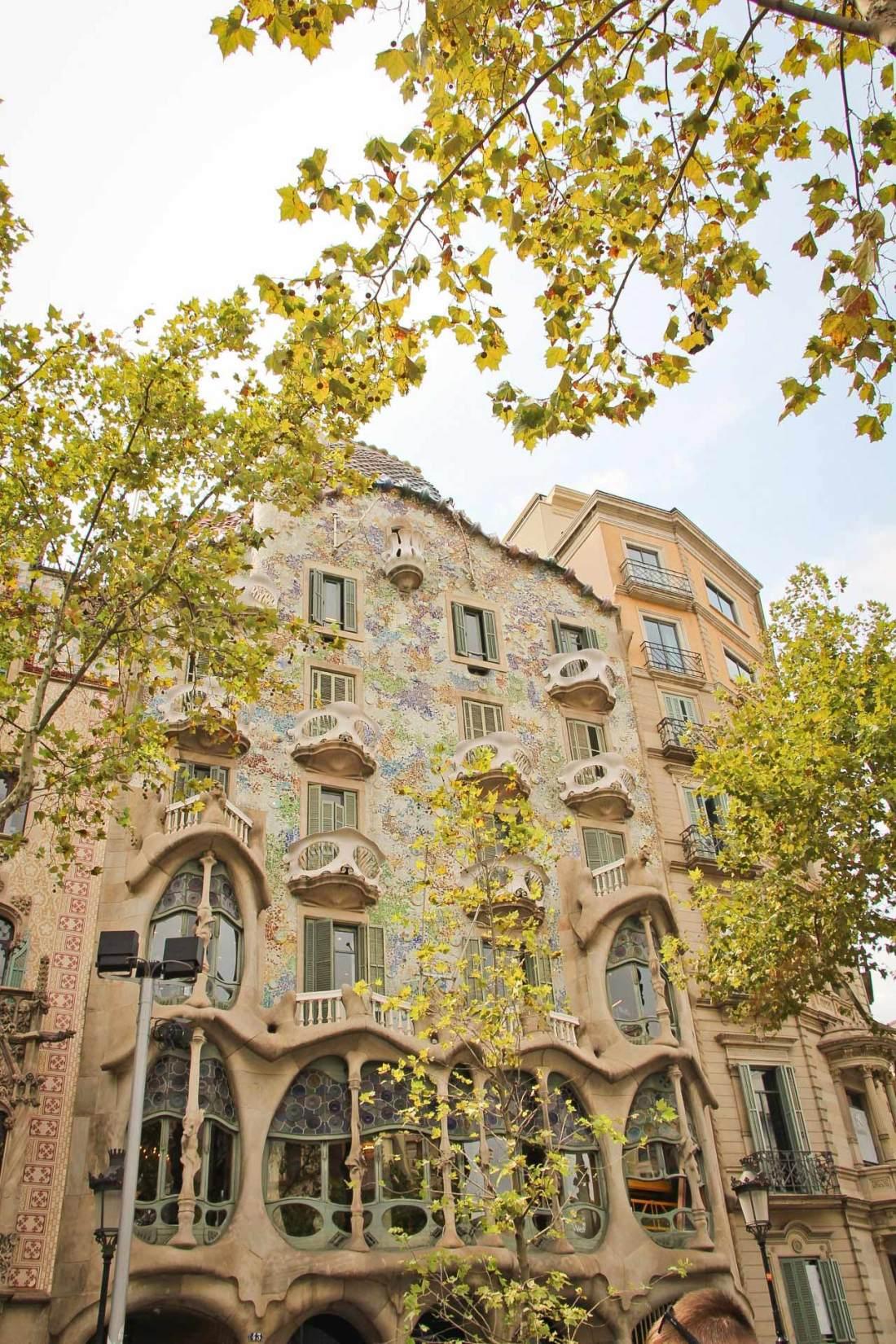 barcelona-casa-batlo-blog-coamotta
